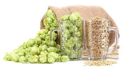 Craft Beer Flavors