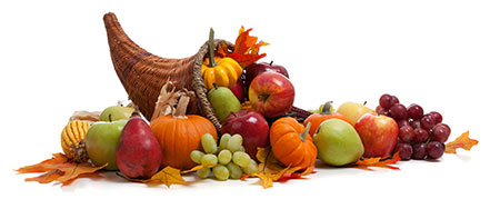 Fall Winter Fruit